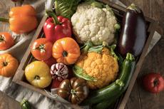 Panier de légumes frais représentant la diétothérapie